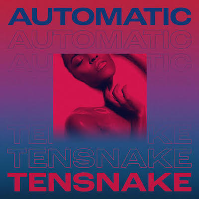 tensnake-automatic